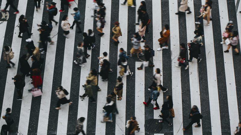 איך להגדיל תנועה באתרי וורדפרס